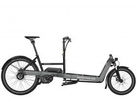 Riese & Muller Packster 60 Vario 2019 E-Cargo Bike in Grey