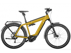 Riese & Muller Supercharger2 GT Touring 2020 Electric Cargo Bike